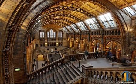 موزه تاریخ طبیعی لندن